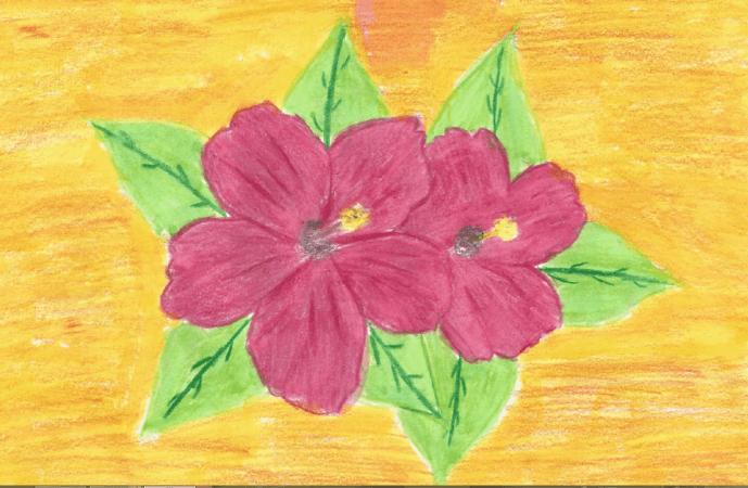 virágok rajza
