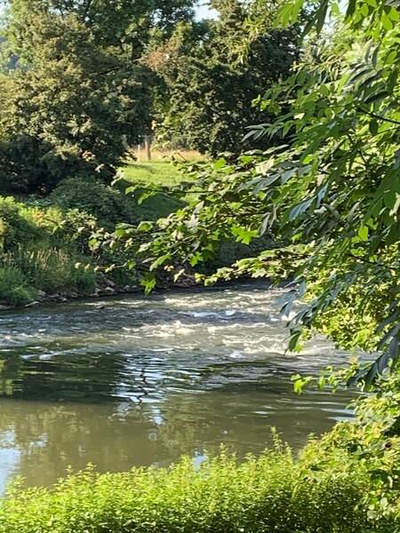 Neckar folyó Wernaunál